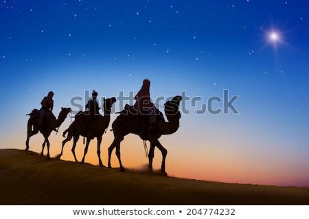 Három bölcs férfiak sivatag illusztráció naplemente Stock fotó © adrenalina