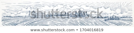 Farm landscape. Engraved Illustration stock photo © ConceptCafe