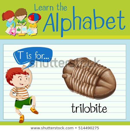 Flashcard letter T is for trilobite Stock photo © bluering