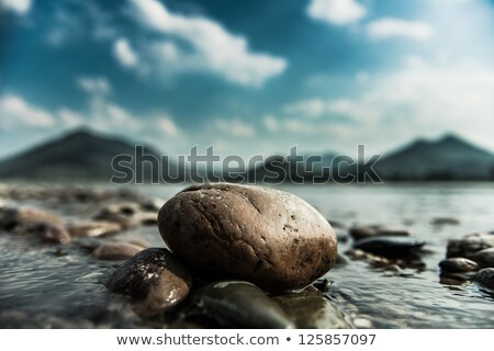 Colorful beach pebbles close up. Stock photo © latent
