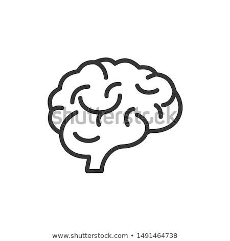 emberi · orgona · hólyag · ikon · feketefehér · orvosi - stock fotó © imaagio
