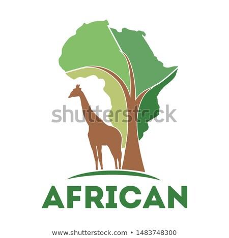 Carte Afrique continent typique arbre Photo stock © artush