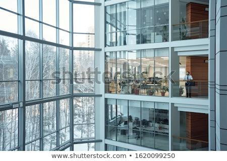 Arquitetura projeto prédio comercial muitos windows ilustração Foto stock © bluering