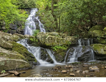 Cascade in Tremont at Great Smoky Mountains National Park TN USA Stock photo © GreenStock