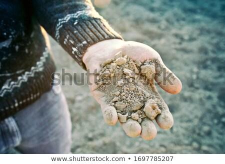 száraz · terep · föld · textúra · absztrakt · minta - stock fotó © lightpoet