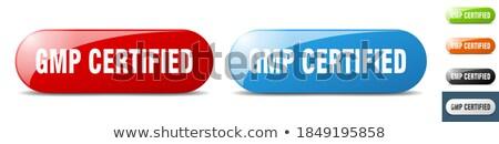 Certified - Blue Key. 3D Stock photo © tashatuvango