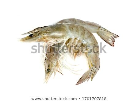 Shrimp isolated on white background stock photo © myfh88
