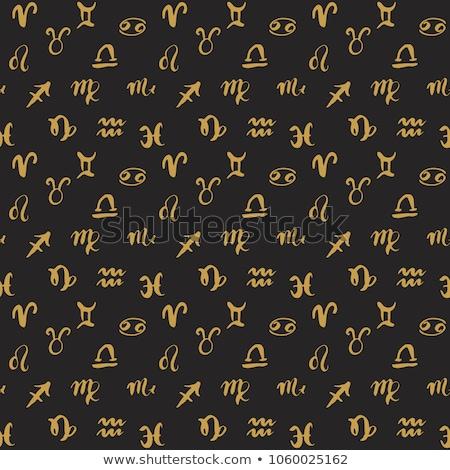 Grunge coleção zodíaco sinais vetor assinar Foto stock © Sonya_illustrations