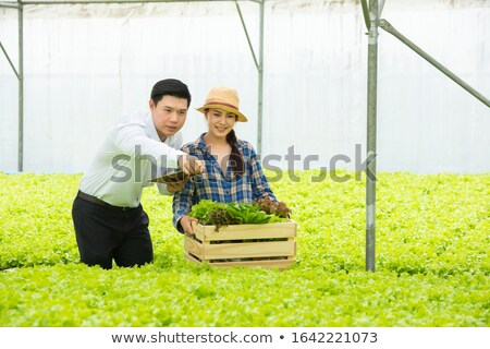 couple inspecting phone together Stock photo © IS2