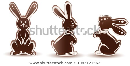 Set sweet chocolate bunny silhouette. Dessert with white icing Stock photo © orensila