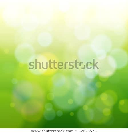 ストックフォト: 緑 · 抽象的な · 光 · 斑 · 星 · 自然