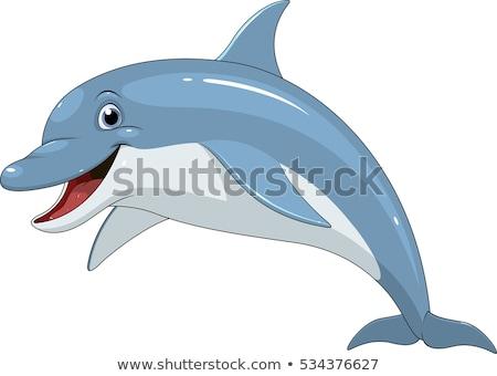 cartoon dolphin animal character Stock photo © izakowski