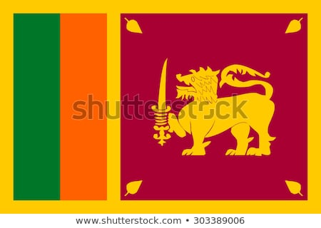 Sri Lanka flag, vector illustration Stock photo © butenkow