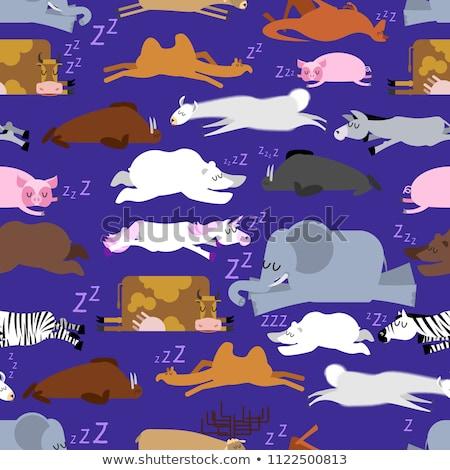 Sleeping animals seamless pattern. Seal and deer. Crocodile and  Stock photo © popaukropa