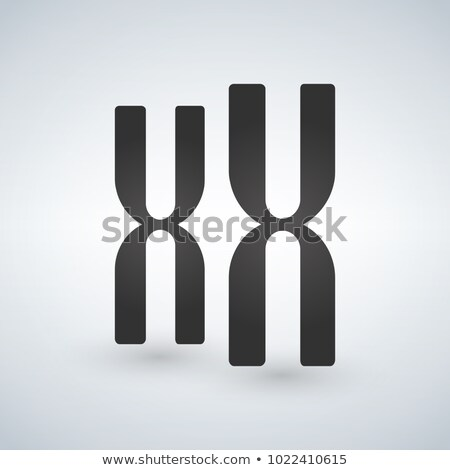 XX Chromosomes vector icon. Style is flat symbol, grey color, is Stock photo © kyryloff