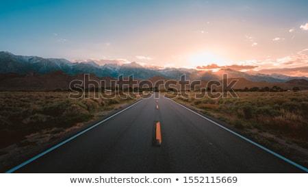 A desert road background Stock photo © bluering
