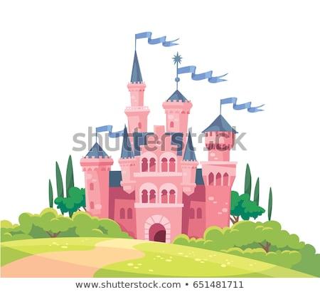 Mittelalterlichen Burg Fee Reich weiß Stock foto © studiostoks
