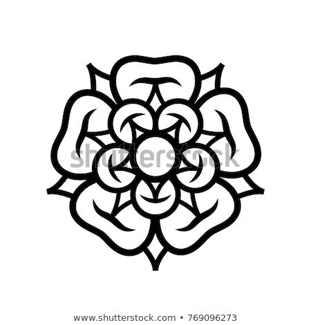 stieg · Königin · Blumen · Emblem · Liebe · Schönheit - stock foto © glasaigh