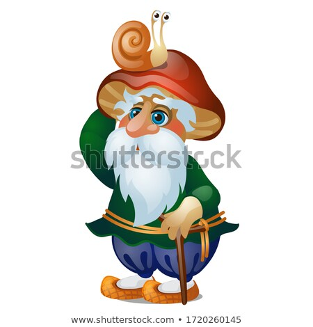 Men hat of the character of Russian folklore isolated on white background. Vector cartoon close-up i Stock photo © Lady-Luck