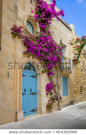 Picturesque narrow street of medieval town Mdina, Malta Stock photo © boggy
