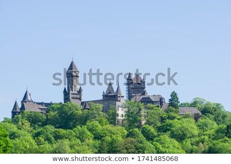 замок Германия мнение холме дерево облака Сток-фото © borisb17