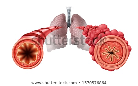 Popcorn Lung Stock photo © Lightsource