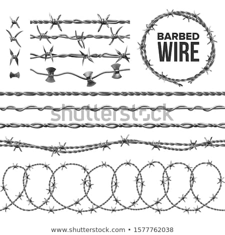 Barb Wire Collection With Razor Detail Set Vector Stock photo © pikepicture