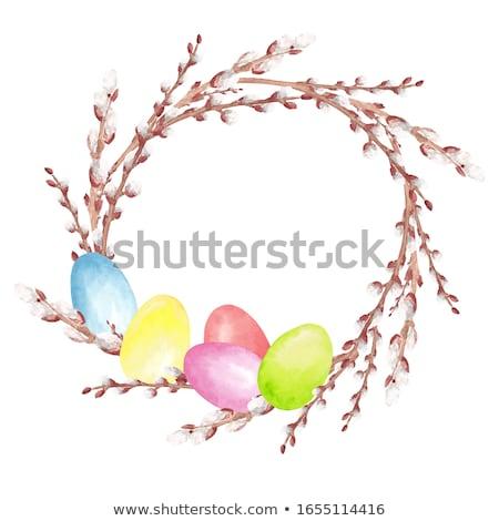 Colorato easter eggs pussy salice rami vacanze Foto d'archivio © dolgachov