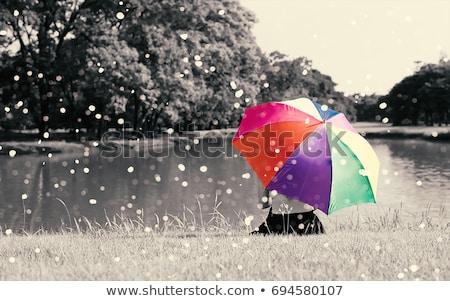 ストックフォト: 女性 · 虹 · 傘 · セクシー · ブロンド · 孤立した