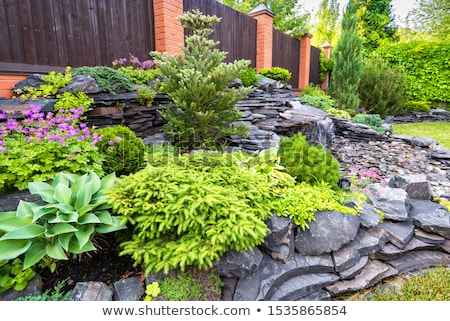 landscaping rock  Stock photo © devon