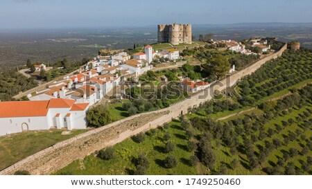 Portekiz · ağaç · seyahat · kale · mimari · tarih - stok fotoğraf © phbcz