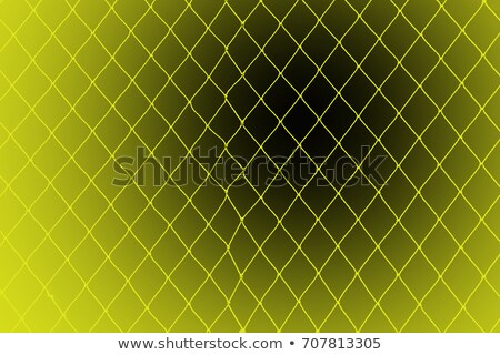 Woman Trapped In Black Fishnet Stock photo © adamr