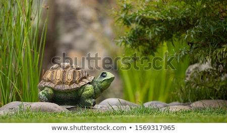 Dekoratív teknős szobrocska kert szép tavasz Stock fotó © artush