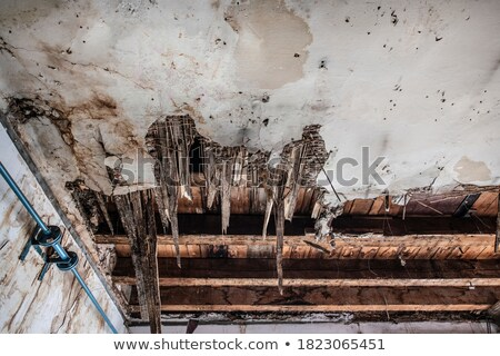 beschadigd · plafond · oude - stockfoto © sirylok