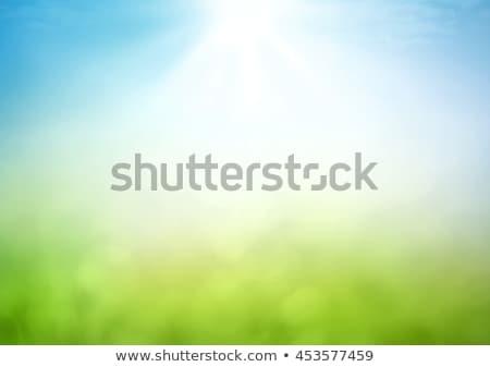 vert · monde · arbre · environnement · conservation · icônes - photo stock © pathakdesigner