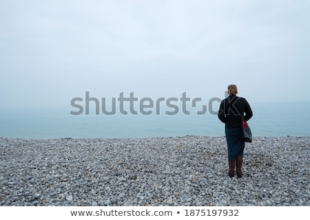 foggy view over the ocean on a clear morning stock photo © 3523studio