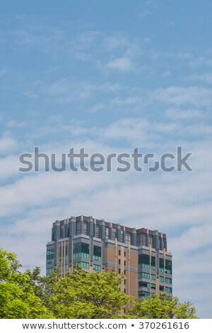 Sunny Confed Stock photo © michelloiselle
