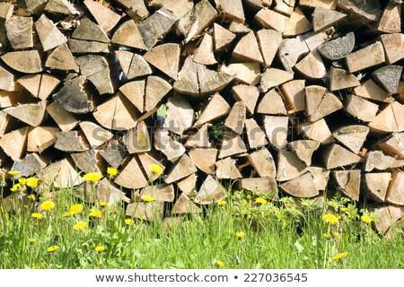 Batch of firewood Stock photo © jakatics
