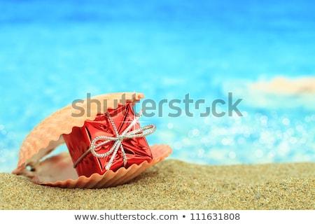 zee · geschenken · ketting · witte · oppervlak · strand - stockfoto © yul30