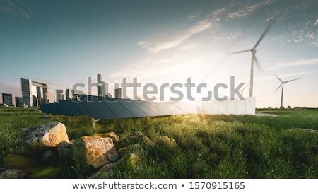milieu · veld · zonnebloemen · plant · natuur · landschap - stockfoto © lightsource