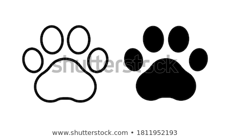 cat silhouette from paw trace Stock photo © burakowski