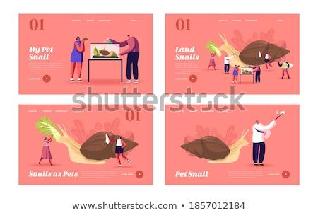 Hatalmas korty mászik friss kert paradicsom Stock fotó © ArenaCreative