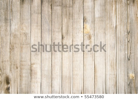 Old wood fence panels close up. Stock photo © latent