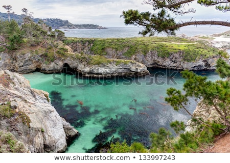 Spectaculor Rock Formations at  Point Lobos State Marine Conservation Area stock photo © wolterk