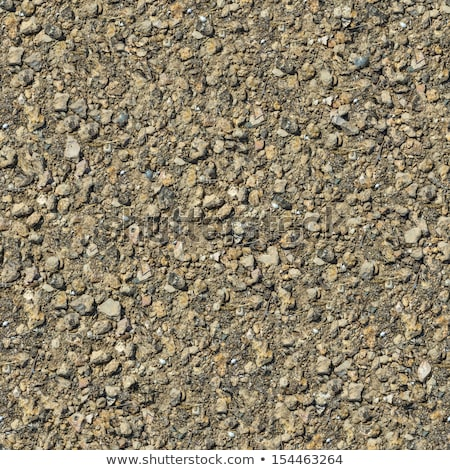 Dirty Rocky Ground. Seamless Tileable Texture. Stock photo © tashatuvango