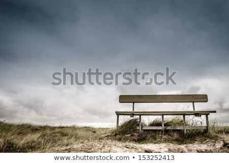 Empty wooden bench on the beach in cloudy weather Stock photo © stevanovicigor