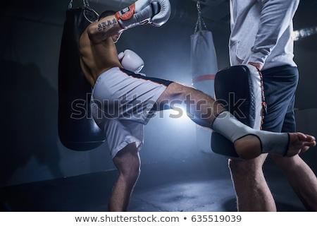 бокса · ногу · молодые · африканских - Сток-фото © runzelkorn