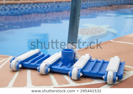 Brush and Leaf Skimmer Beside Swimming Pool Stock photo © juniart