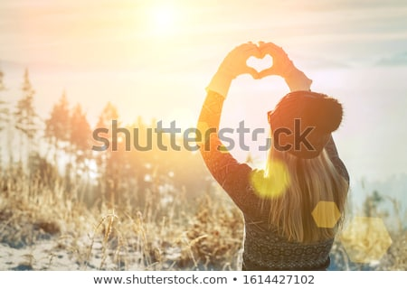 winter mountains in morning stock photo © bsani