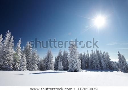 冬 山 太陽 風の強い 日 ウクライナ ストックフォト © BSANI